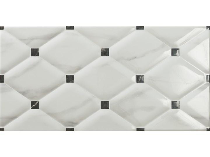 Azur Decor 25x50 Rozmiar2 25x50 cm Kafle Prostokąt Przeznaczenie v2 Płytki ścienne