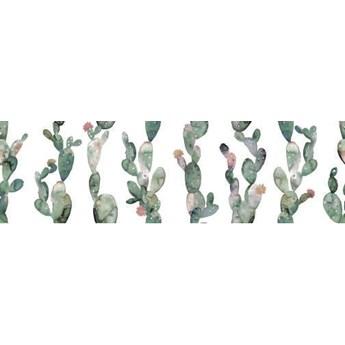 Glimpse Cactus Ornato 29,75x99,55