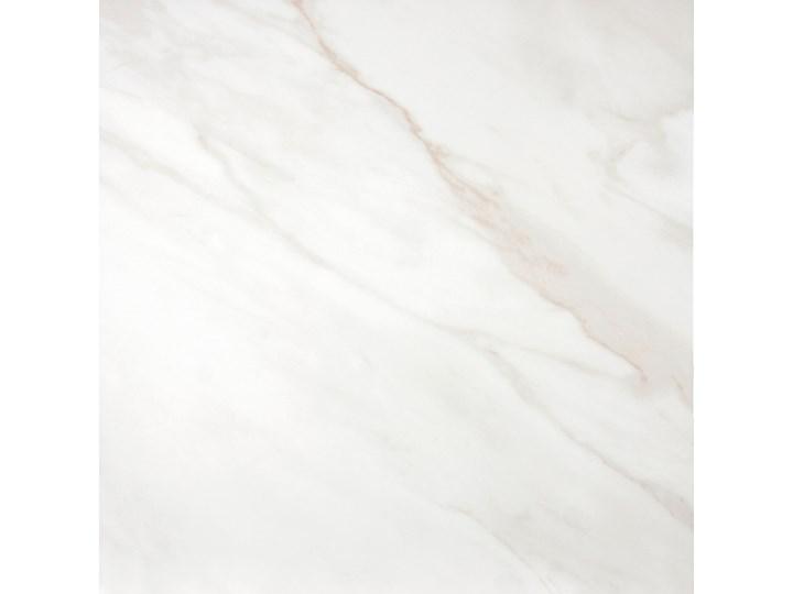Calacatta Blanco 60,8x60,8 płytki marmurowe Płytki podłogowe Gres 60,8x60,8 cm Płytki tarasowe Kwadrat Płytka bazowa Powierzchnia Polerowana