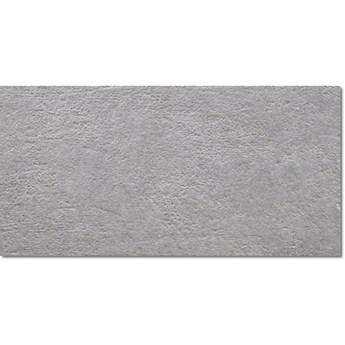 Light Stone Grey 25x50