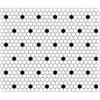 Mini Hexagon B&W Spot  26x30