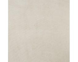 Zenith Beige Natural 59,2x59,2 płytki podłogowe