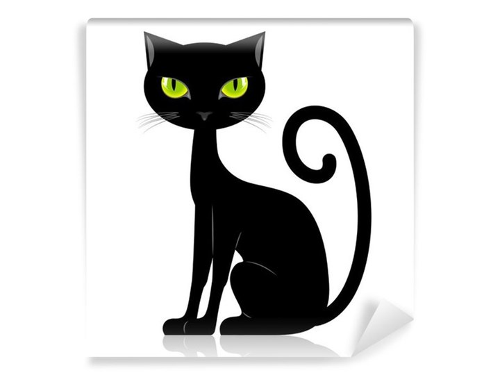 Fototapeta Czarny Kot Fototapety Zdjęcia Pomysły Inspiracje