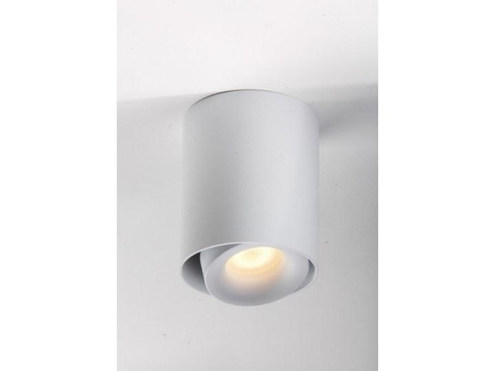 LM P 818/1 WH TUBA PLAFON NOWOCZESNA LAMPA SUFITOWA OPRAWA NATYNKOWA BIAŁY PAR16 GU10 LED