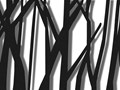 Obraz Solvor Czarny 120x80 cm Wymiary 80x120 cm Wzór Natura