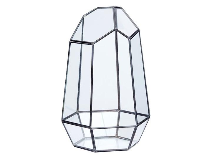 Terrarium ICE II