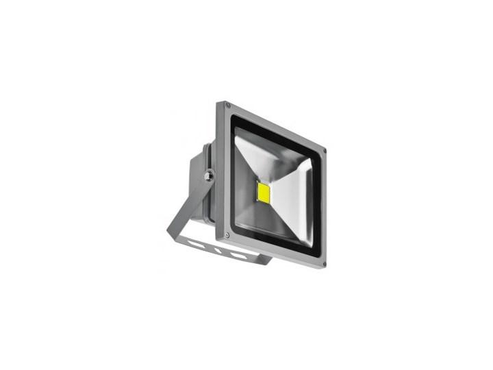 Naświetlacz LED 30W BGR Lampa LED Kategoria Lampy ogrodowe
