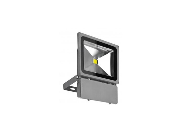 Naświetlacz LED 80W BGR Lampa LED Kategoria Lampy ogrodowe