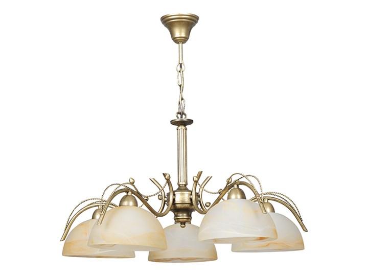 ATENA 5 136/5 klasyczny żyrandol okrągłe klosze Metal Szkło Kategoria Lampy wiszące Lampa z kloszem Ilość źródeł światła 5 źródeł