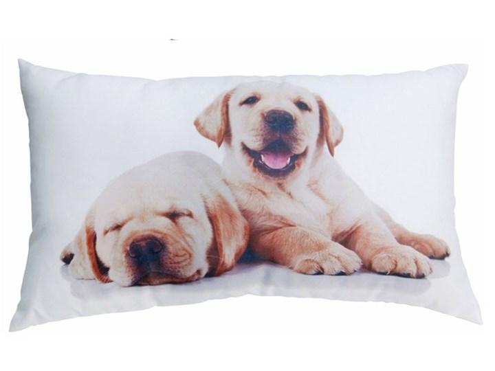 Poduszka Dekoracyjna Psy