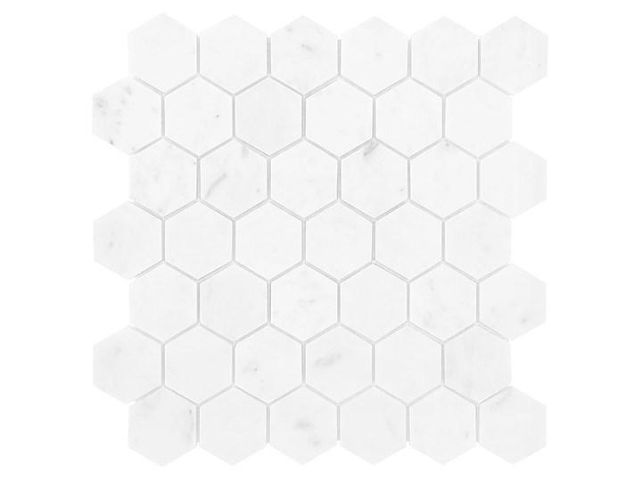 CARRARA WHITE HEXAGON 48  29,8x30,2 Heksagon Wzór Marmur 29,8x30,2 cm Płytki podłogowe Gres Płytka bazowa Płytki ścienne Kategoria Płytki