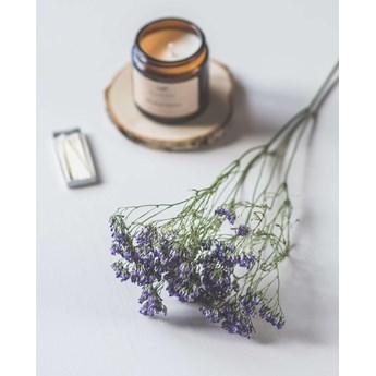 Waniliowy Mus, świeca zapachowa 120ml, Biotika