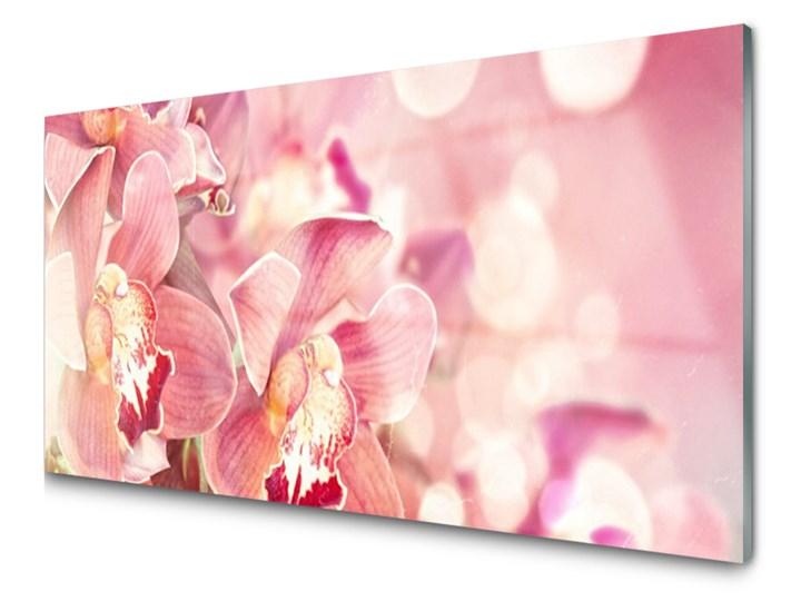 Obraz Akrylowy Kwiaty Roślina Obrazy Zdjęcia Pomysły
