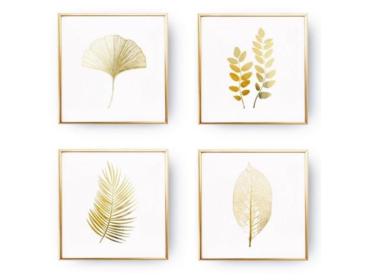 Zestaw 4 Plakatów Botanicznych