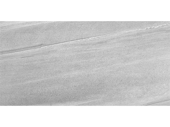 gres piaskowiec  BURLINGTON GREY 120x60 Płytki podłogowe Prostokąt Kolor Szary