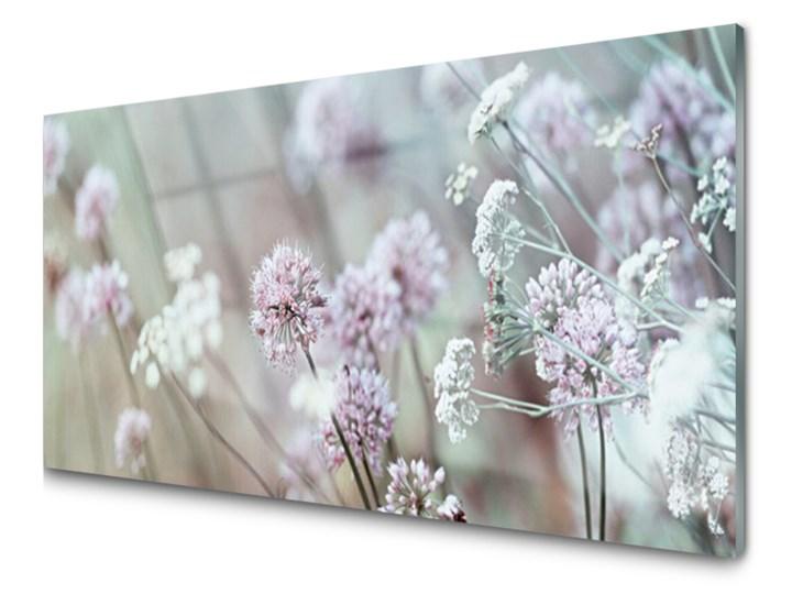 Obraz Akrylowy Kwiaty Polne łąka Natura Obrazy Zdjęcia Pomysły