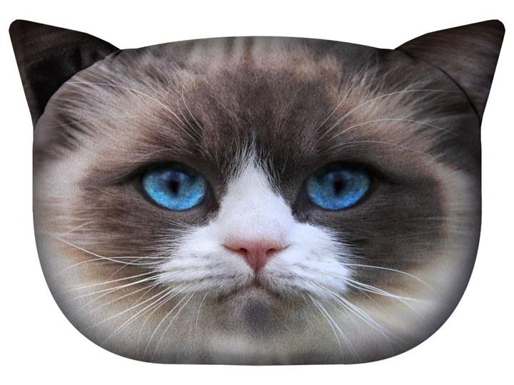 Poduszka Koty Daisy Poduszki Dekoracyjne Zdjęcia