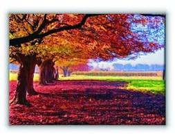 Kolorowy Krajobraz - Obraz na płótnie