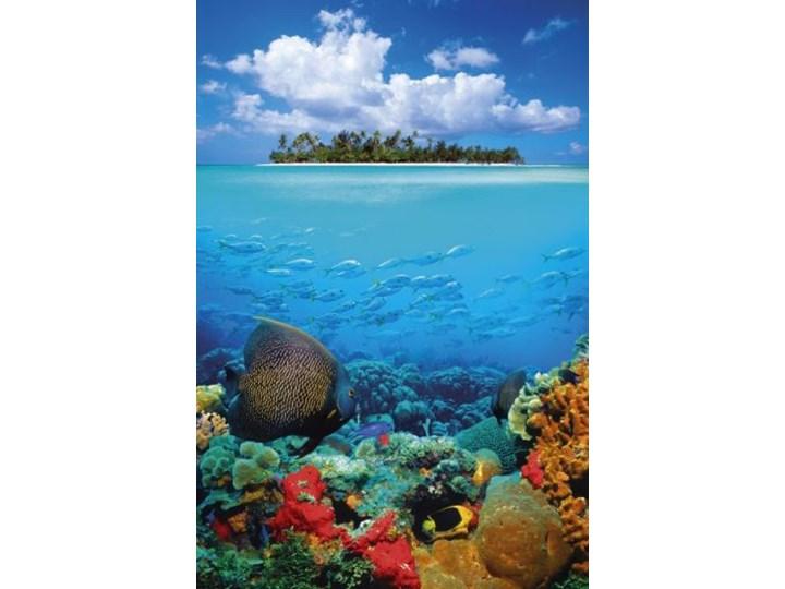 Tropikalna Wyspa I Rafa Koralowa Plakat