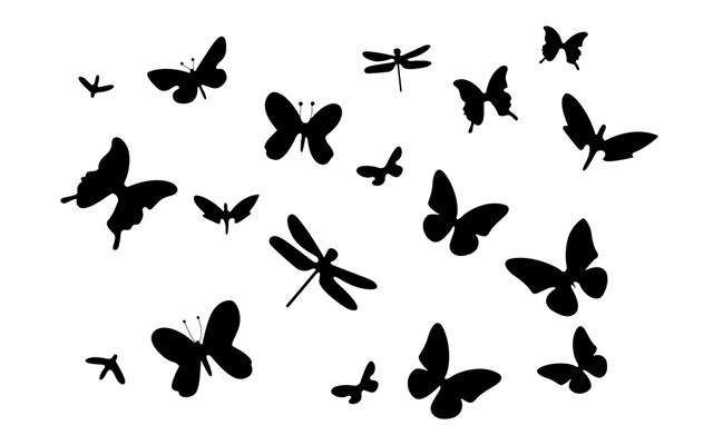 Naklejki Na ściane Motyle Ws 0171