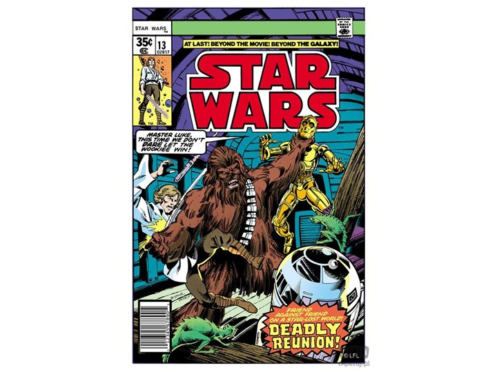 Obraz Star Wars - Deadly Reunion 70-458
