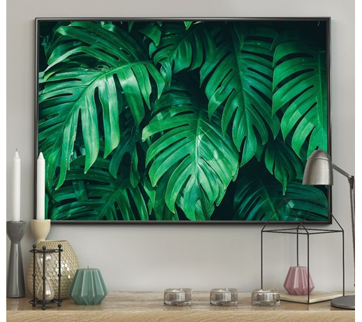 DecoKing - Plakat ścienny - Monstera