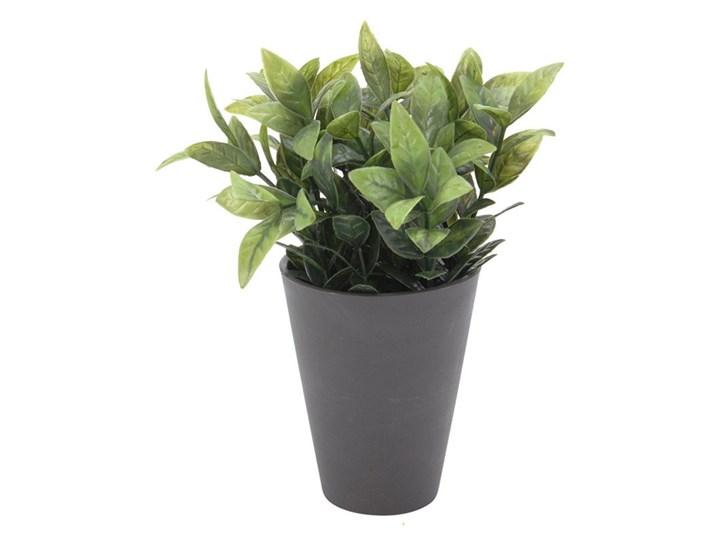 Sztuczna Liściasta Roślina Dekoracyjna W Szarej Donicy Ko 317002070c Doniczka 10 Cm X 45 Cm