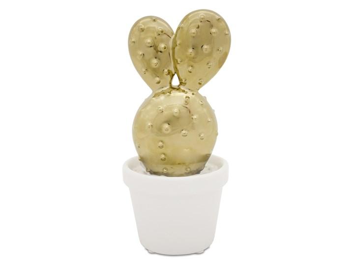 Figurka kaktus Argo Ceramika Rośliny Kolor Beżowy