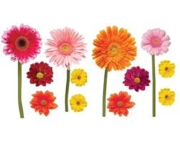 Naklejki Kolorowe kwiaty z kryształkami KSNC333WD