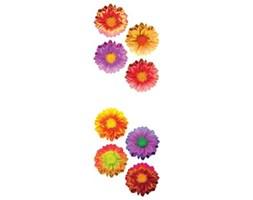 Naklejka Kolorowe kwiaty SPN15