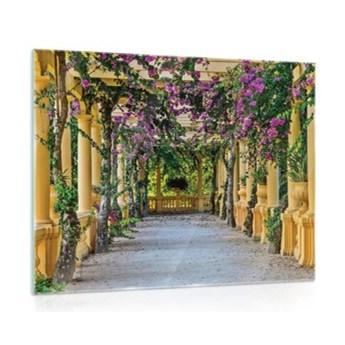 Obraz na szkle Taras z Kwiatami GT10896