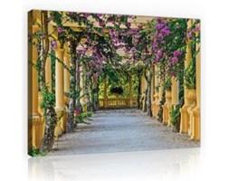 Obraz Taras z kwiatami PP10896