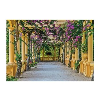 Fototapeta Taras z kwiatami 10896