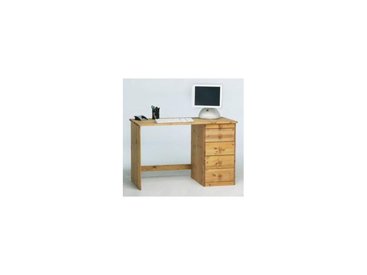 Biurko Home Office Steens, Sosna naturalna, 100x60 cm