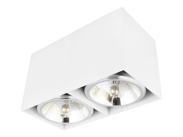 Oprawa natynkowa podwójna prostokątna 2x QR111 aluminium ruchoma biała Prostokątne Oprawa stropowa Oprawa halogenowa Oprawa ruchoma Kolor Biały