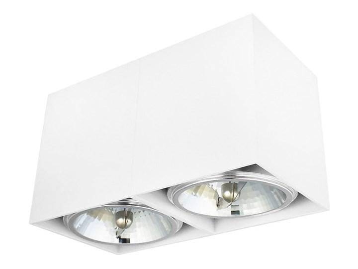 Oprawa natynkowa podwójna prostokątna 2x QR111 aluminium ruchoma biała Oprawa stropowa Oprawa halogenowa Prostokątne Oprawa ruchoma Kolor Biały