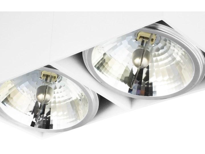 Oprawa natynkowa podwójna prostokątna 2x QR111 aluminium ruchoma biała Oprawa ruchoma Oprawa stropowa Prostokątne Oprawa halogenowa Kolor Biały