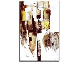 Obrazy abstrakcyjne do salonu - Kompilacja - 60x90 cm - G15956