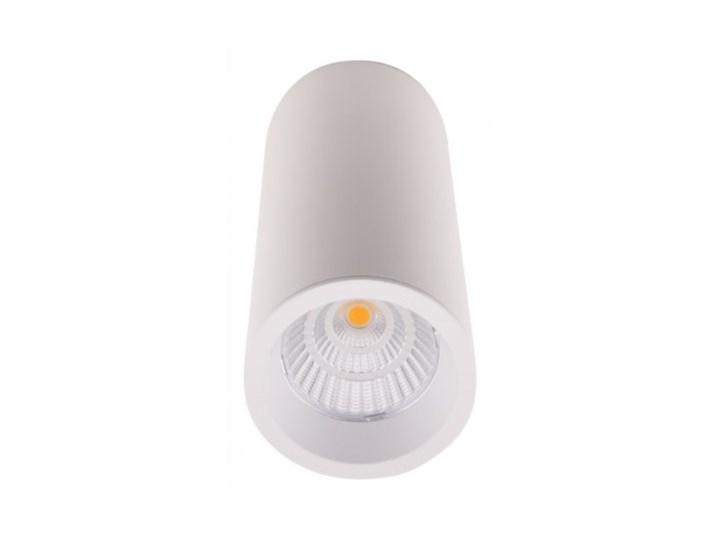 Long C0153 lampa sufitowa/plafon okrągły biały Okrągłe Oprawa dekoracyjna Oprawa led Oprawa stropowa Kategoria Oprawy oświetleniowe