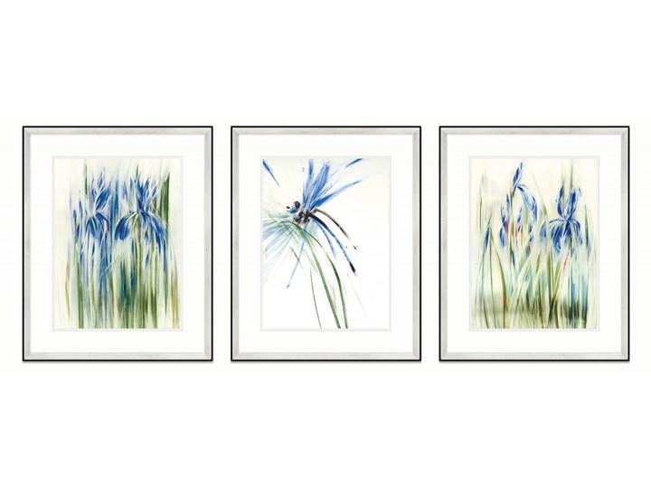 SERIA WODNA 2 - Obrazy natury, kolor niebieski, irysy oraz ważka. Dekoracja sypialni i salonu. Wymiary 43x53 cm Pomieszczenie Sypialnia