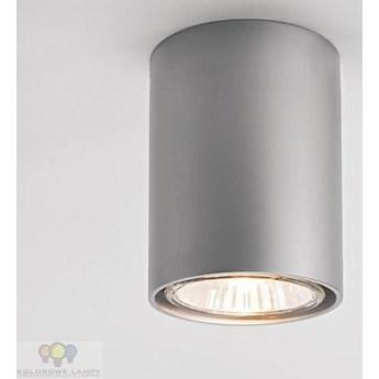 42311-08 Aquaform - oswietlenia Oprawa natynkowa PET FINE kolor 42311-08 SZCZOTOKWANE ALUMINIUM