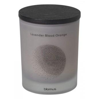 Świeca zapachowa Lavender Blood Orange 8x7cm Blomus FLAVO jasnoszara kod: B65803