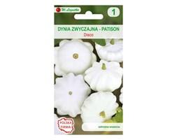 Dynia zwyczajna (Patison) DISCO nasiona tradycyjne 2 g W. LEGUTKO