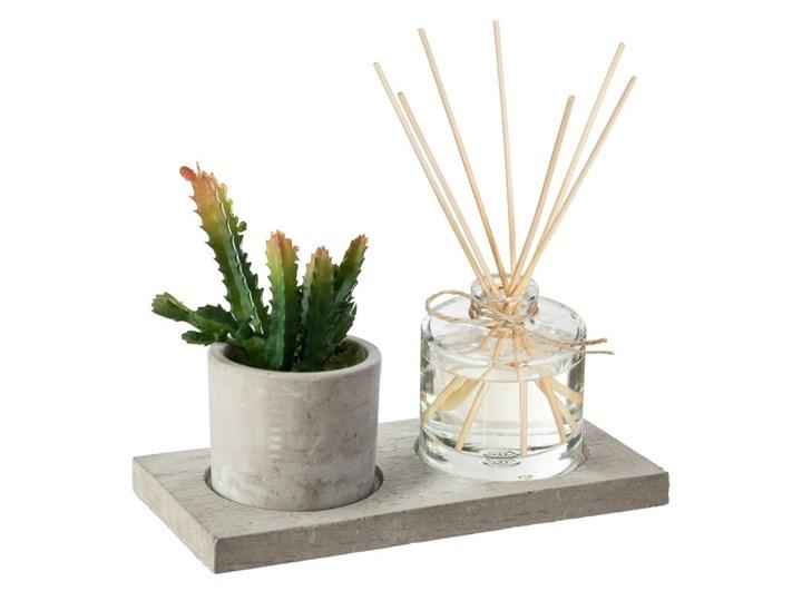Elegancki zestaw zapachowy AMBRE & JERSEY w komplecie z kaktusem i patyczkami
