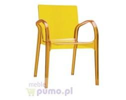 Przezroczyste krzesło Dejavu