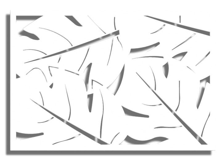 Obraz SOLGUNN Biały 120x80 Wzór Natura