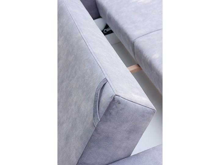 Sofa BRISTOL z funkcją spania Stała konstrukcja Kolor Styl Nowoczesny
