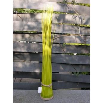 Dekoracyjny pęk trawy / Dekoracja