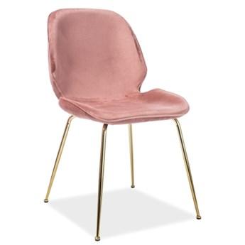 Aksamitne krzesło na złotych nogach Adrien Velvet w stylu glamour