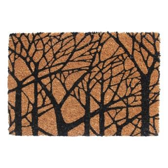 Wycieraczka Colours Tree 40 x 60 cm